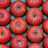 りんご100