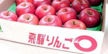 飛騨りんご300