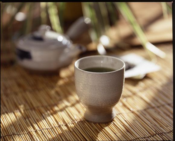 白川園本舗ほうじ茶トップ