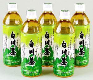 白川茶ペットボトル500